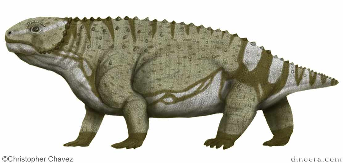 Anthodon gregoryi