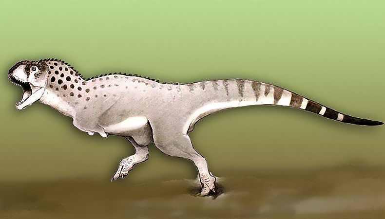 Lebender Dinosaurier Entdeckt