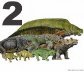 Pareiasauria
