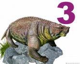 Pareiasuchus