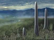Живые существа простейшие грибы